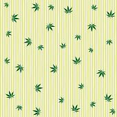 pic of marijuana leaf  - cannabis rain abstract pattern - JPG