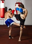picture of kickboxing  - Two kickbox fighters training in the gym - JPG
