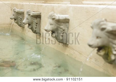 Statue Of Lion Heads Spout Water
