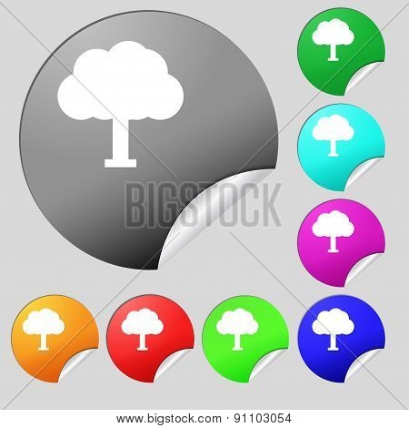 Tree, Forest  Icon Sign. Set Of Eight Multi-colored Round Buttons, Stickers. Vector