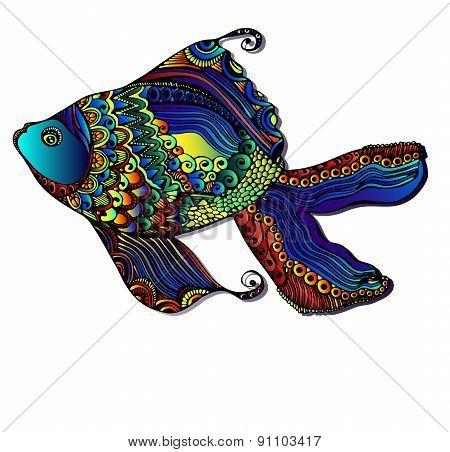 Beautiful bright fish