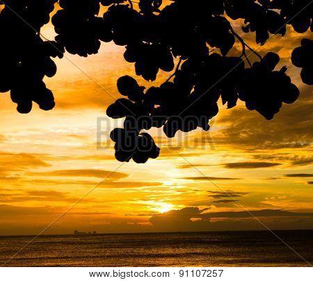 Idyllic Coast Evening and Sea