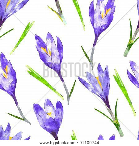 Watercolor Seamless Pattern With Purple Crocus Flower And Green Leaves. Floral Background. Vector Il