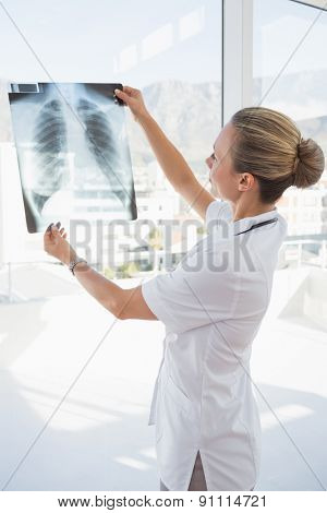 Doctor looking at Xray beside windows in hospital
