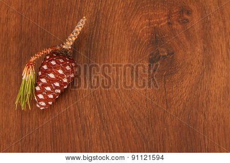 The Pine Cone On The Wood