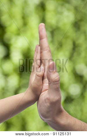 Father And Son In High Five Gesture On a natural Background