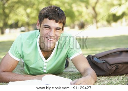 Teenage Boy Relaxing In Park
