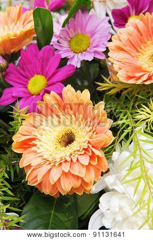 Gerbera And Daisy