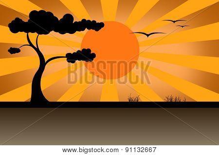 savanna graphic