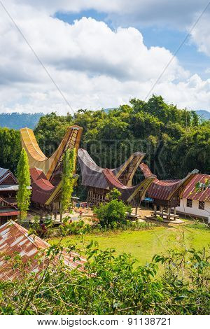 Traditional Toraja Village In Idyllic Landscape