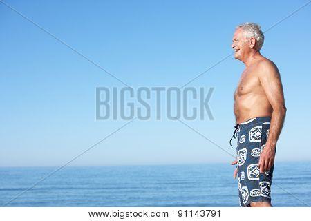 Senior Man Standing On Summer Beach