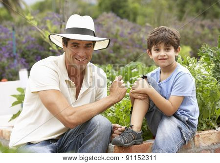 Father And Son Working In Vegetable Garden