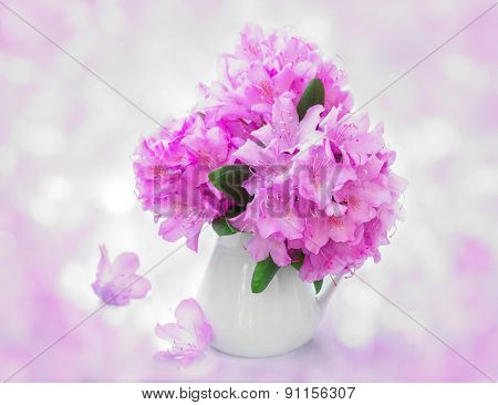 Still Life with rhododendron flowers in white jug.