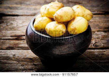 Young Organic Potato In A Cauldron
