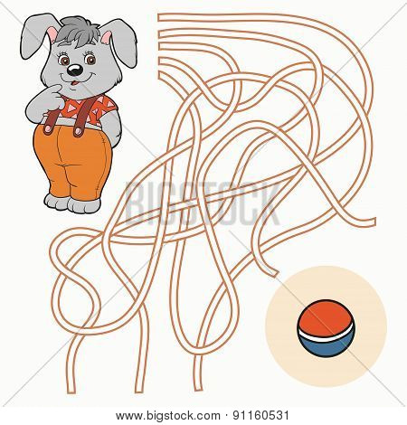 Maze Game For Children (rabbit)