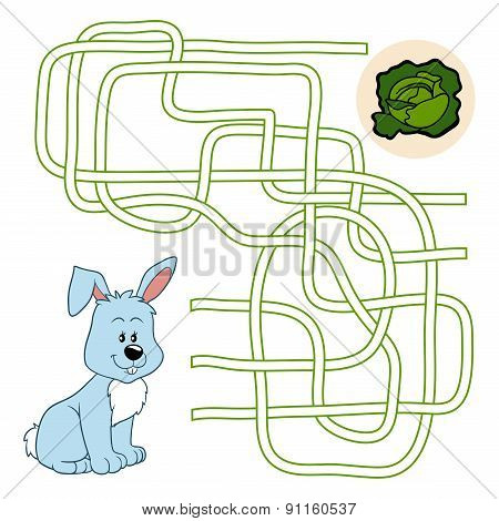 Maze Game (rabbit)