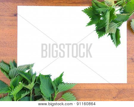 Frame with  Nettle