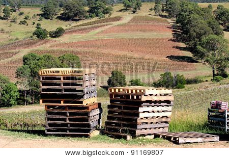 Pallets on a Winery Vineyard