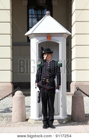 Soldier In Norway