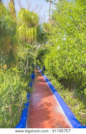 MARRAKESH, MOROCCO, APRIL 4, 2015: Majorelle Gardens - path painted in Majorelle Blue