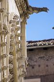 stock photo of gargoyles  - Foreground of a gargoyle in Cuenca Cathedral - JPG
