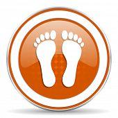 picture of webbed feet white  - foot orange icon   - JPG