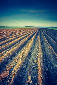 picture of plowing  - Vintage photo of plowed field in calm countryside - JPG