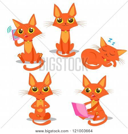 Cute Cat Set. Cat Cartoon Vector. Sitting Cat. Sleeping Cat. Cat And Phone. Cat And Computer. Vector Cat. Red Cat Tail. Cat Pictures. Funny Cat Mascot.