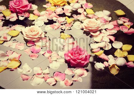 Pink and yellow rose petals in glass bowl with water, close up