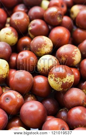 jujube or chinese date, use for fruit background