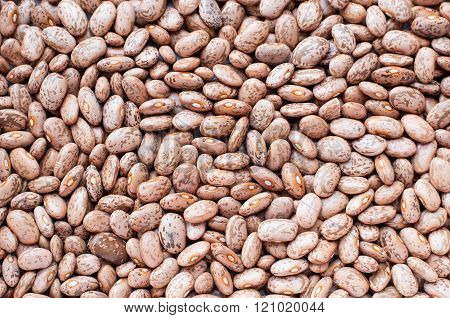 Healthy Brown Pinto Beans with High Fiber and Low Fat Contents used for Backgrounds