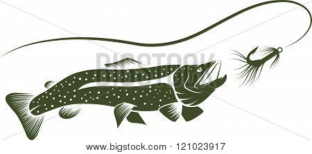 Trout And Lure Vector Design Template . Concept Of Graphic Clipart Work