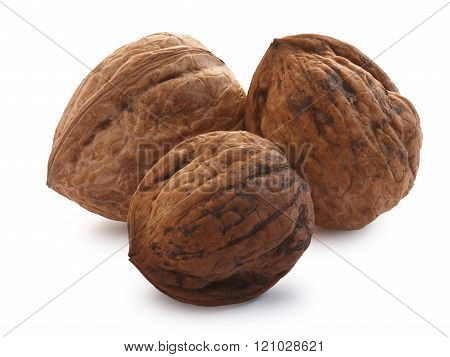 Whole Shelled Walnuts