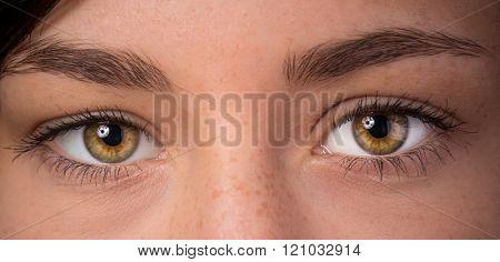 Woman eyes with long eyelashes. Macro shot.