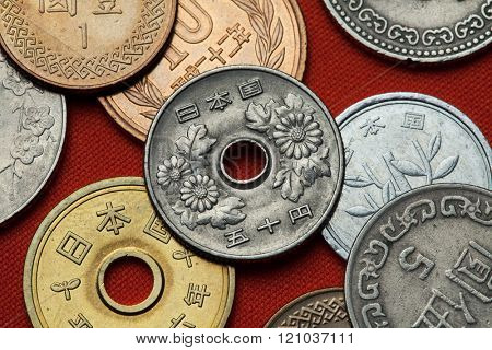 Coins of Japan. Chrysanthemum flowers depicted in the Japanese 50 yen coin.