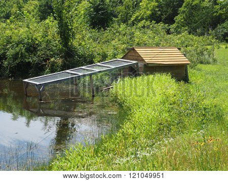Duck House By A Pond