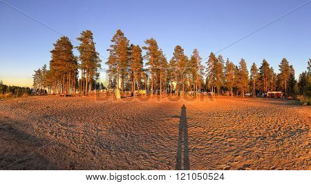 Silhouette of a Photographer on the Sand with Warm Sunset in Swedish Camping under Pine Trees