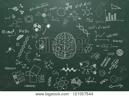 Brain Science Chalkboard