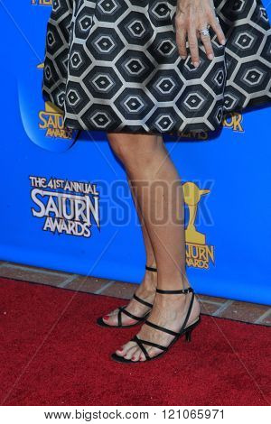 BURBANK - JUN 25: Catherine Mary Stewart at the 41st Annual Saturn Awards at The Castaway on June 25, 2015 in Burbank, California,