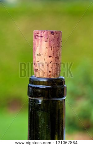 cork in wine bottle