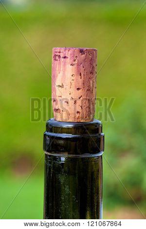 cork in wine bottle