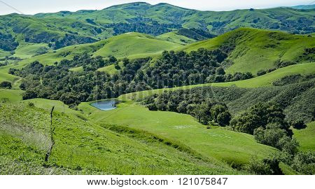Green Valley, Cambria, California