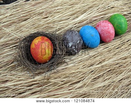 Colorful Of Eggs On Dried Grass Background,easter