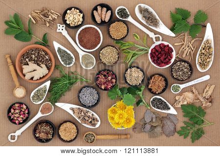 Healing herb and spice selection used in natural alternative medicine for women.