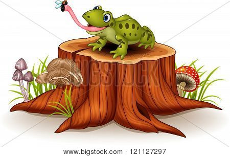 Cute frog catching fly on tree stump