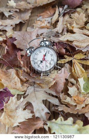 Alarm On Fallen Leaves