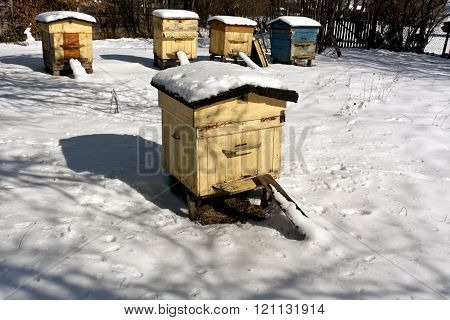 Weathered Bee Hives In Snow.
