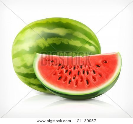 Watermelon, vector icon
