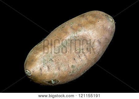 Sweet Potato On A Black Background