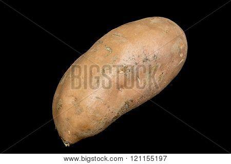 Sweet Potato On Black Background